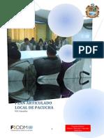 PAL Pacucha.pdf