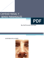 Fosa Nasal
