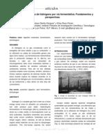 Produccion_hidrogeno.pdf