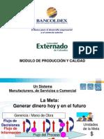2199_Producción_y_calidad_EXTERNADO_III_2010