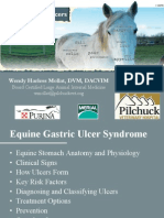 Equine Gastric Ulcers / A Presentation by Wendy Harless Mollat, DVM, DACVIM, Pilchuck Veterinary Hospital