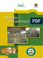 MODULO 1 Infraestructura - Para La Crianza de Cuyes