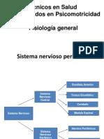 5 1 Sistema Nervioso Periferico Resumen