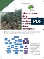 Deforestaci%c3%93n Inserto
