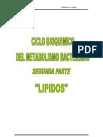 CATABOLISMO DE LIPIDOS