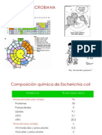 3a.NutricionMicrobianaBRV2