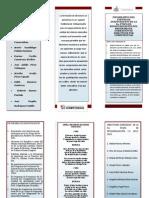 Publicación4