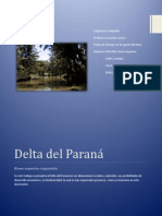El delta del Paraná