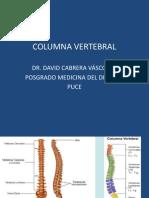Fracturas de Columna Vertebral