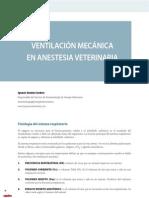 cv_33_10-15_Ventilación mecánica en anestesia veterinaria