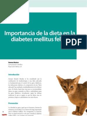 dieta para la diabetes diabcare