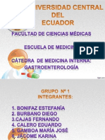 Diapositivas Gastro