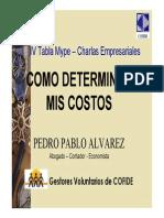 Determinacion de Costos Pedro Alvarez
