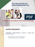 trabajadores_independientes_08-2013.pdf