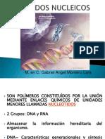 Acidos_Nucleicos1