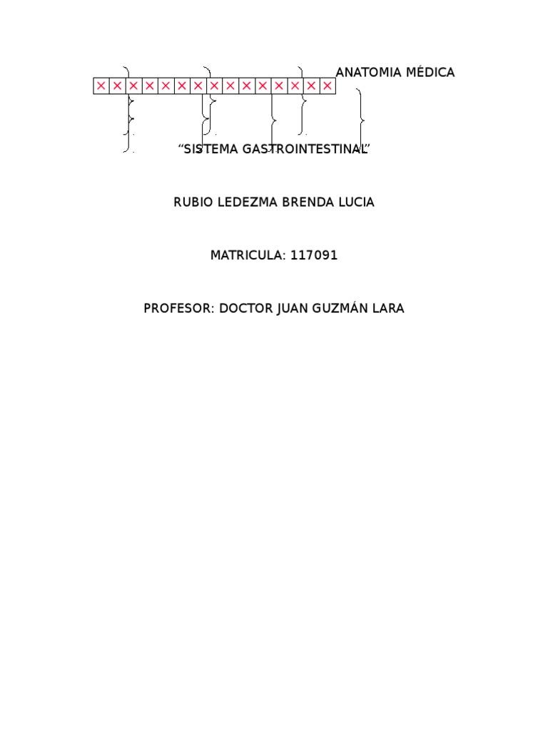 Reportes de Anatomia Humana1