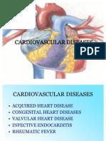 59861570 Cardiovascular Diseases Ppt