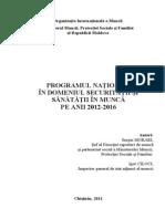 Proiect Program National SSM 2012-2016