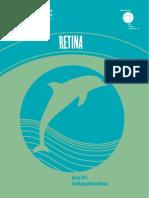 Retina 2011 Syllabus