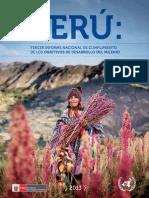 Tercer Informe Nacional sobre el cumplimiento de los ODM (2013).pdf