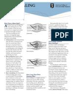 BoneHealing.pdf