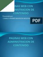 Paginas Web Con Administracion de Contenido
