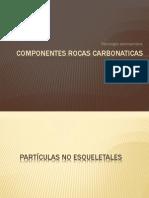 Rocas Carbonaticas Arturo Bravo