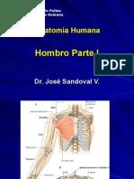 2da Clase Miembro Superior - Hombro - Dr. Sandoval