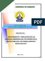 Estudio de Impacto Ambiental Defensa Ribereña