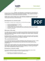 Stretch_marks.pdf