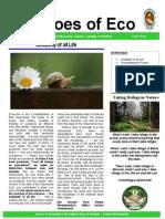 Vivekananda Kendra-nardep Newsletter August 2013