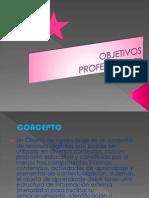 Objetivos Profesionales Angie Cardoso