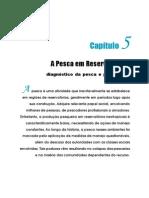 Cap 05-0-Ecol Man Rec Pesq.pdf