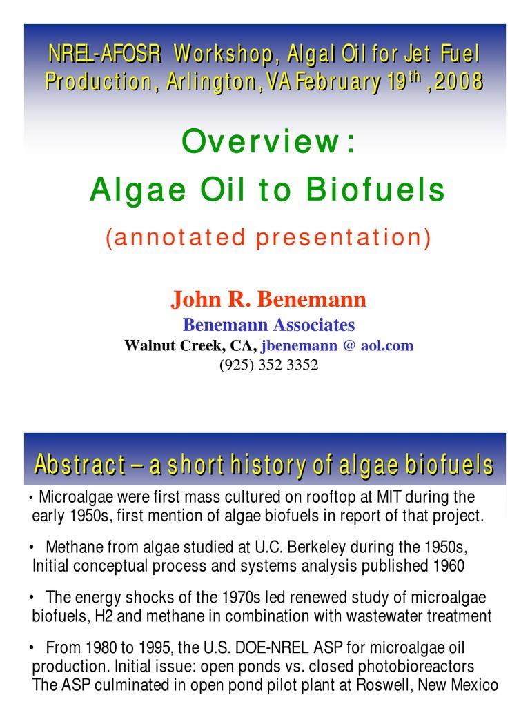 Ben Em Ann   Algae Fuel   Biofuel