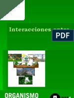interacciones entre organismos