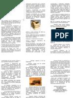 Triptico_Fundamentos_delDereho.doc