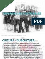 DIFERENCIAS CULTURALES.pptx
