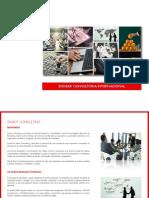 Dossier CONSULTORIA.pdf