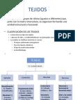 02 Tejido Epitelial, Conectivo y Piel 2013