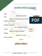 FISICAONELAB07