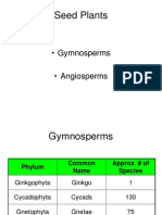 Gymnosperms and Angiosperms