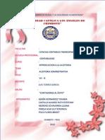 auditoria administrativa informe