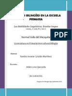 Habilidades, Linguisticas_cazzany.docx