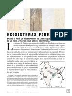 ecosistemas forestales- Danhi