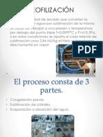 leofilizacion.pptx