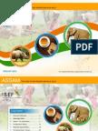 Assam - August 2013