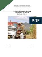 Documento Cana de Azucar 2010-2011