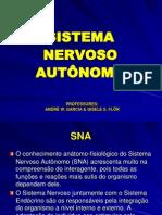 Sist Nerv Aut 2008-1