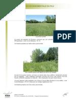 rapport_part7.pdf