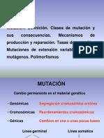 Mutaciones introducción